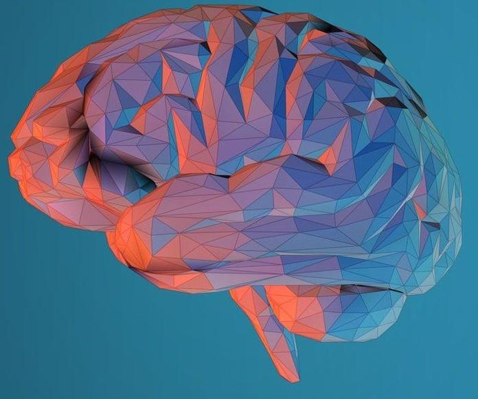 Esto es lo que pasa en tu cerebro cuando lees poesía
