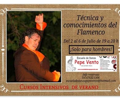Técnica del Varón y conocimientos del baile Flamenco