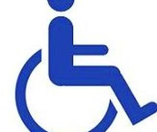 Día Mundial de la Discapacidad, 3 de Diciembre