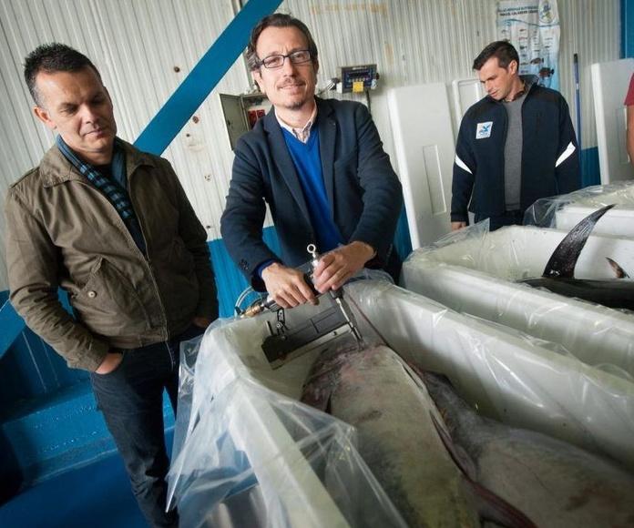 Pesca Artesanal, una marca que garantiza la producción pesquera de Tenerife