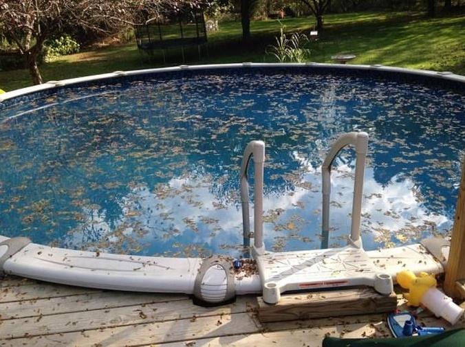 Riesgos de no mantener limpia una piscina