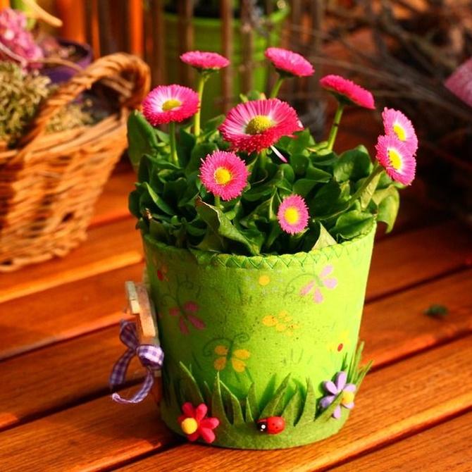 Beneficios de las flores sobre el estado de ánimo