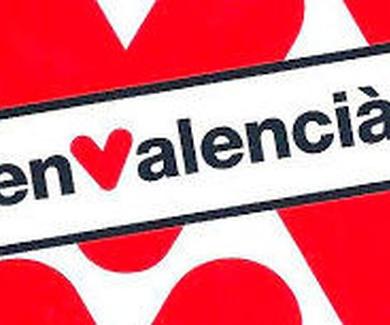 Clases individualitzades de valencià
