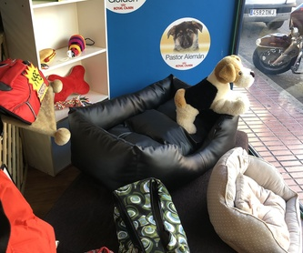 Peluquería canina y felina: Nuestros servicios de Darlings