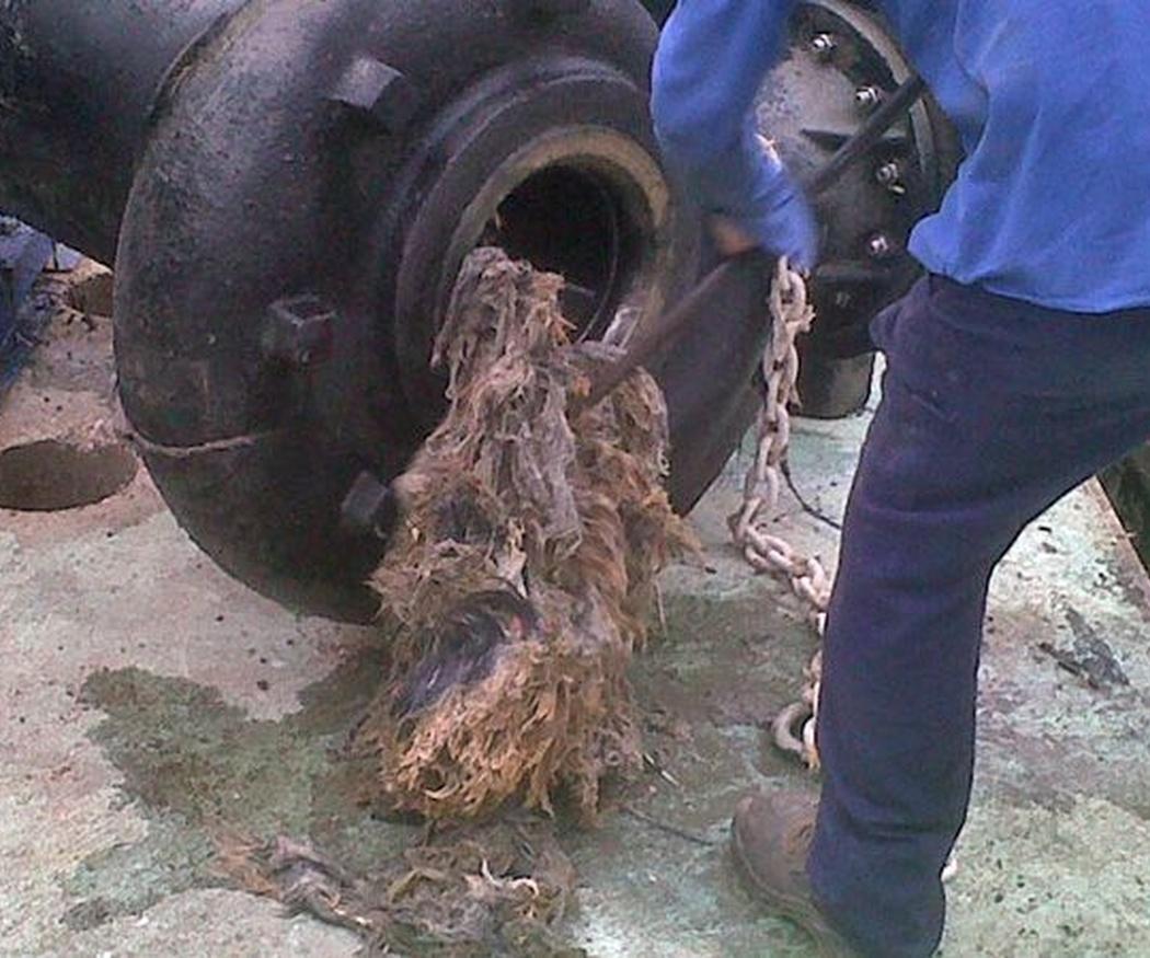 Los motivos más comunes de atascos en tuberías