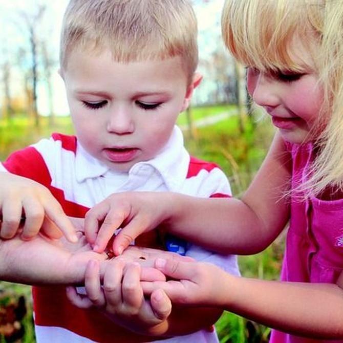 Qué aprenden los niños en una escuela infantil
