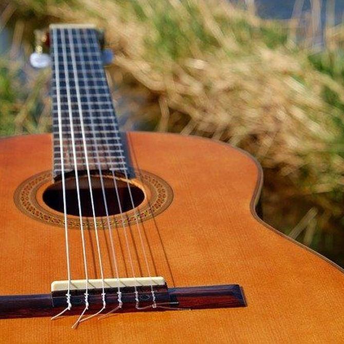 Diferencias entre guitarra clásica, flamenca y acústica