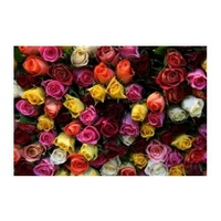 Destacamos: Productos y Servicios de Floristería Decoflor