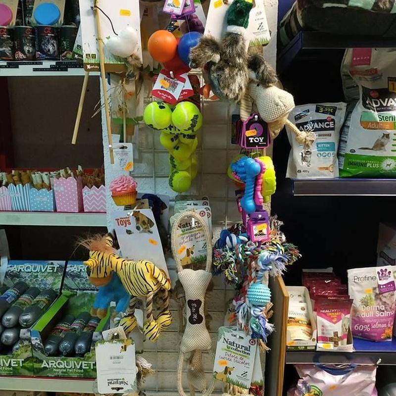 Juguetes: Servicios de Lobito's Peluquería Canina