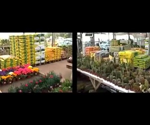 Centros de jardinería en Castelló d'Empuries | Mercajardí