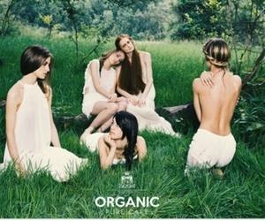Nuestros productos son orgánicos y veganos.