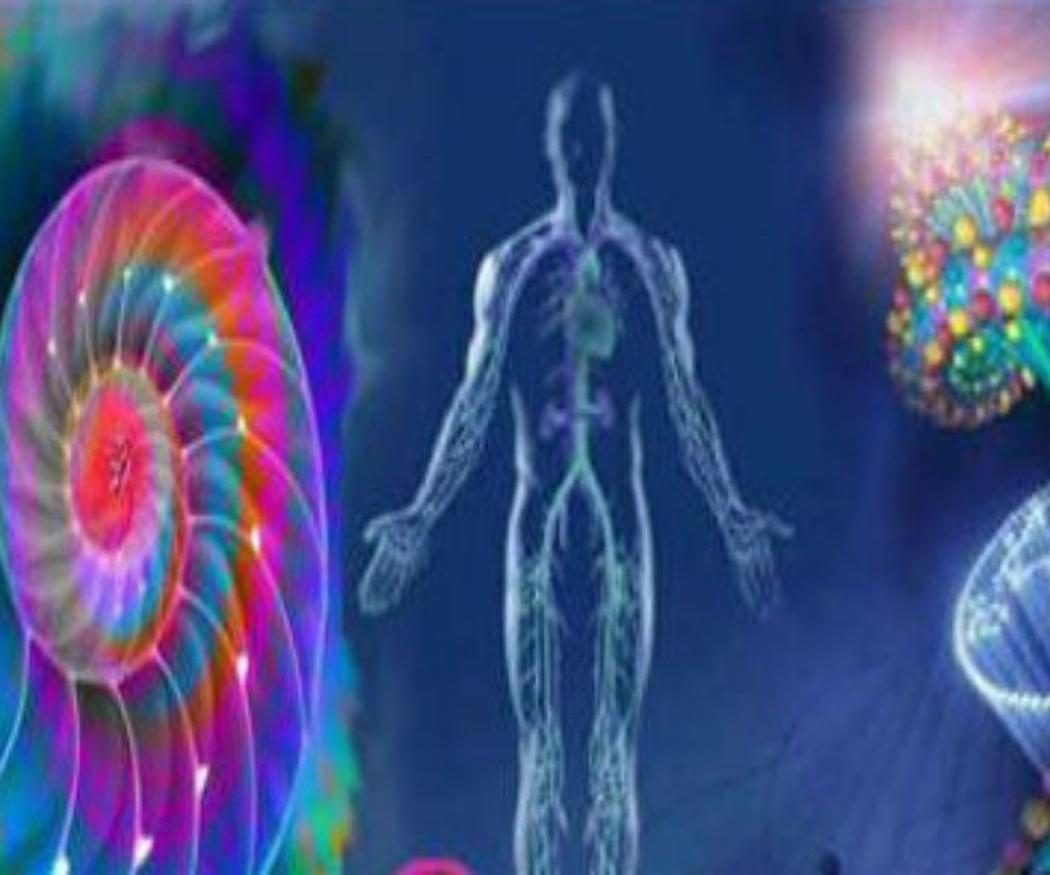 Más sobre la biorresonancia cuántica