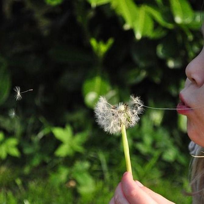 Consejos para mejorar la inteligencia emocional de los niños
