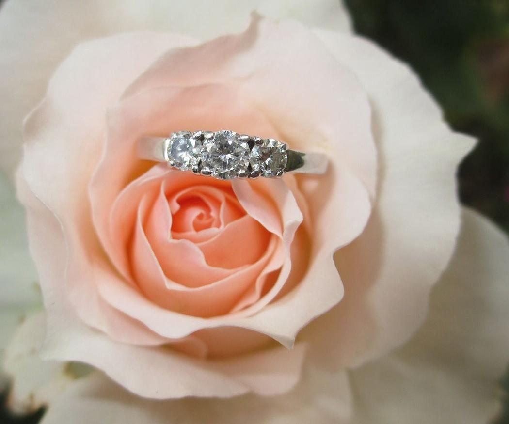 Anillo de compromiso, el regalo más esperado por una mujer