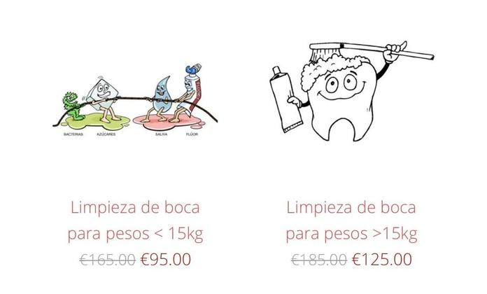 Precios baratos LINPIEZA de boca
