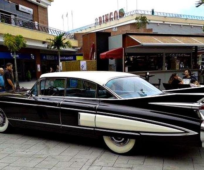 Cadillac Fleetwood 1959: Nuestros vehículos de HM LUXURY TRANSPORT