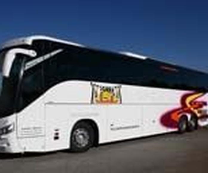 Autocares Escolares: Servicios de Autocares Torre Alta, S.L.