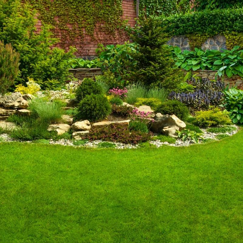 Mantenimiento de jardines: Servicios de limpieza de TLQ Servicios