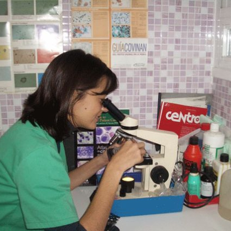 Análisis: Servicios de Clínica Veterinaria Pirámides