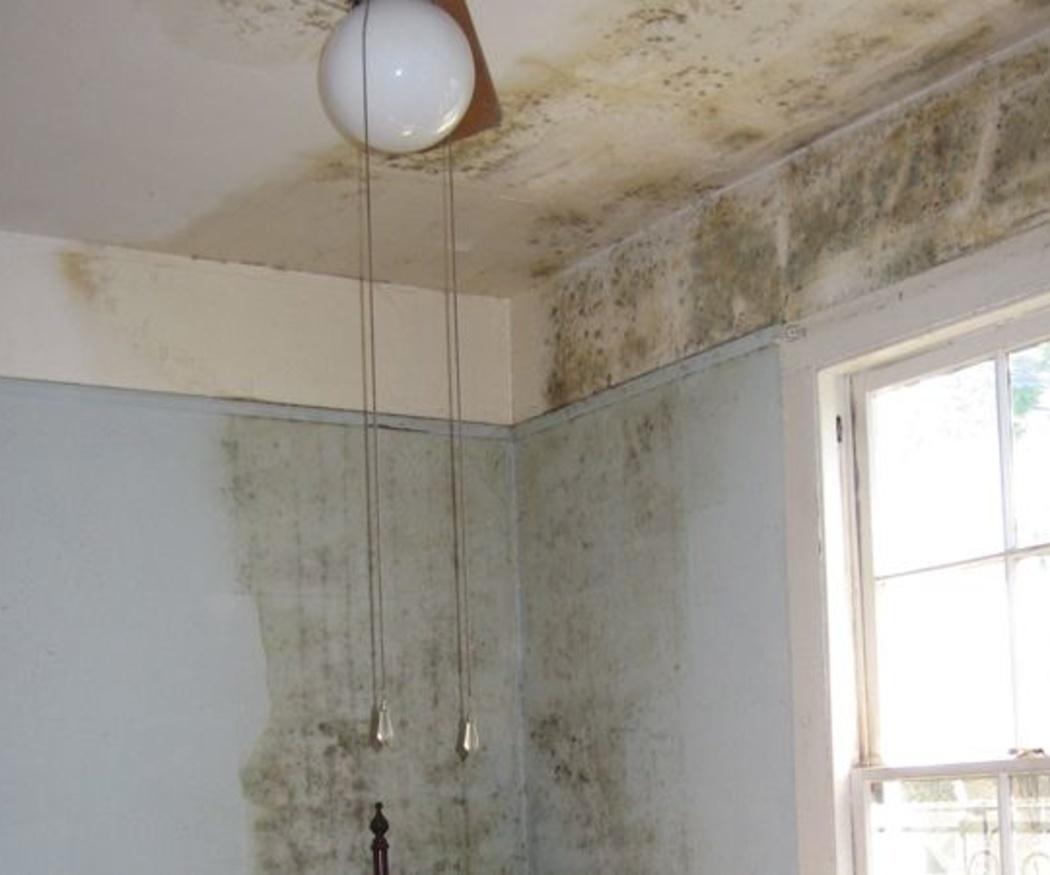 Problemas que causan las goteras en los edificios
