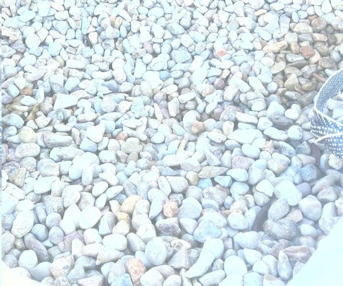 Serpis (piedra de río)