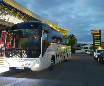Autocar de 55 plazas: Servicios de Autocares Herrero