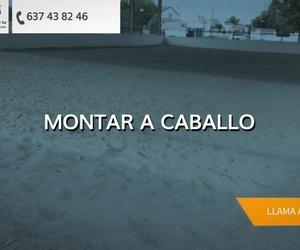 Galería de Hípica y equitación en Fuente el Saz de Jarama | Club Hípico Lira Cubero