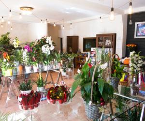 Composiciones florales en Ponferrada