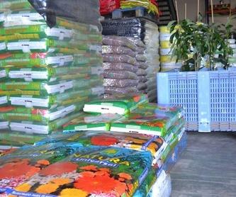 Semillas, céspedes, árboles frutales y plantel de hortalizas: Productos de Agro Garden