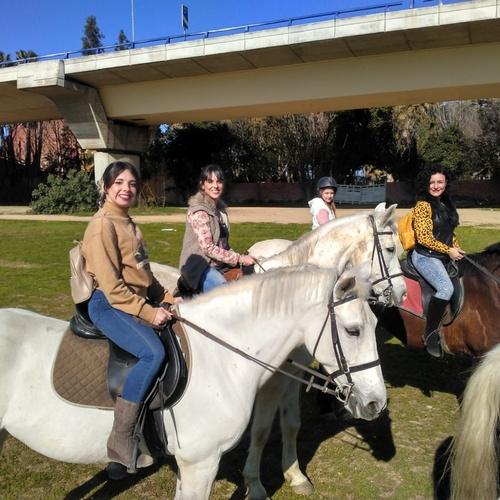 Paseos a caballo Sevilla