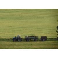 Derecho Agrario : Servicios de Scarante & Partners