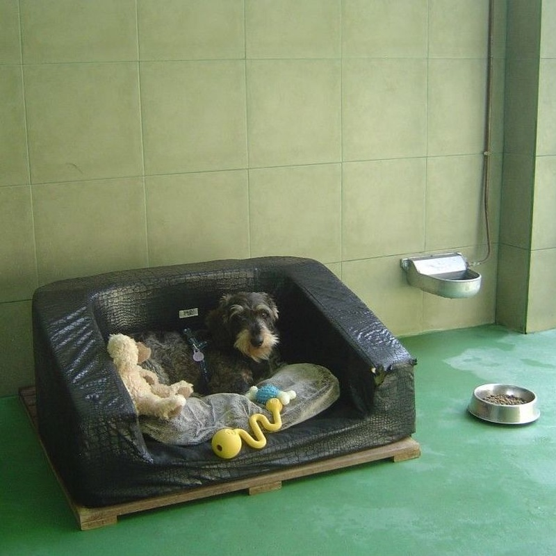Tarifas : Servicios de Errekagane Residencia Canina