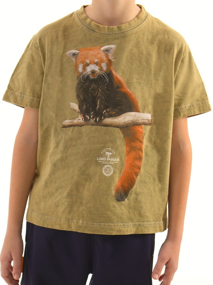 Camiseta Niñ@ Panda Rojo / Red Panda Child´s T-Shirt: Productos de BELLA TRADICION