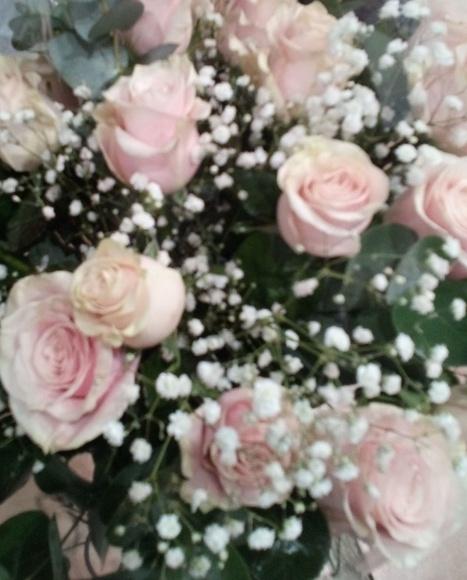 LA MADRE: Productos y servicios de Floristeria rosella