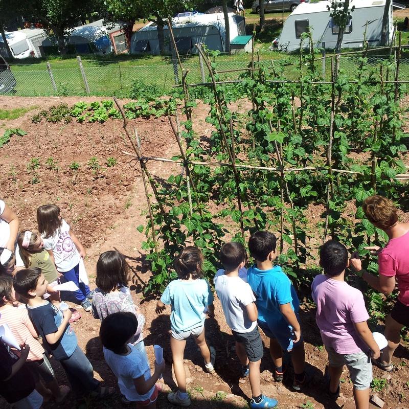 Animación infantil: Nuestros alojamientos de Camping Laspaúles