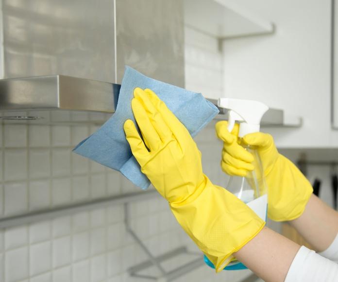 Limpieza a particulares: Servicios de Limpiezas San Martín