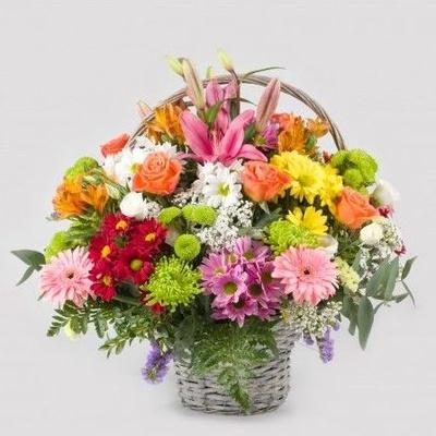 Todos los productos y servicios de Floristerías: Flores Freesia