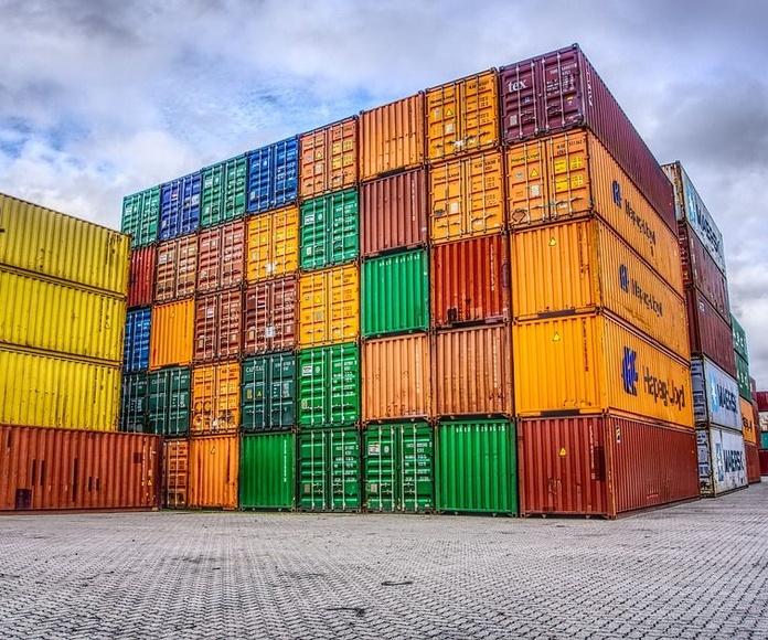 Transporte de contenedores: Servicios de Grupo Logística Jinama S.L.U
