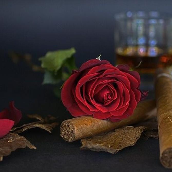 De tabacos y culebrones