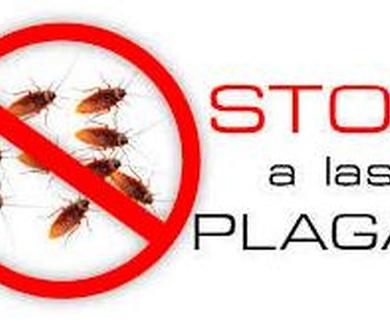 aumenta el interes por el control de plagas biologico