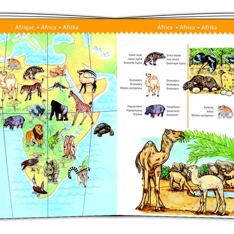 PUZZLE OBSERVACIÓN. LOS ANIMALES DEL MUNDO. DJECO. 17,95 €