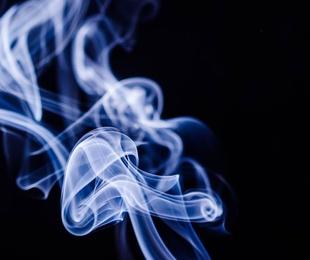La historia de los puros