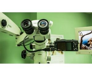 Endodoncia microscópica
