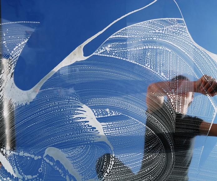 Limpieza de cristales: Servicios de Limpic Rec