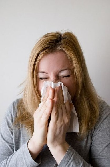 Mosquiteras ayuda contra la alergia