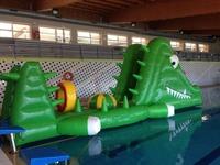 acuatico cocodrilo