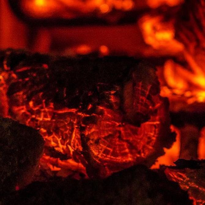 Los usos y los beneficios del carbón vegetal