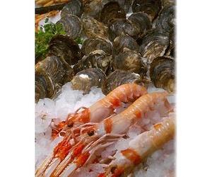 Ofrecemos una selección de mariscos frescos del día en Pozuelo de Alarcón