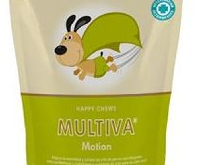 MULTIVA MOTION