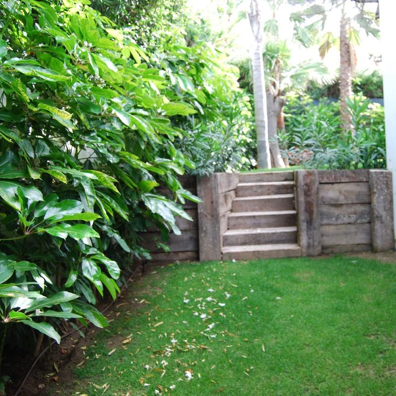 Muros y escaleras : Productos y servicios de Fantastic Gardens
